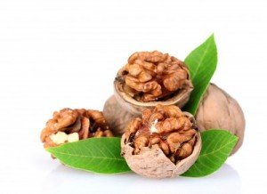 picture of walnuts and leaves