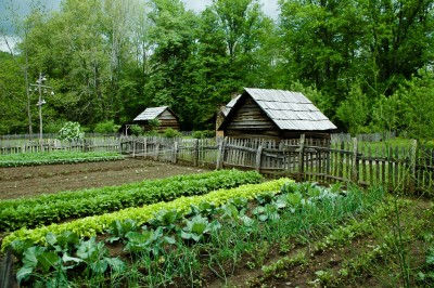 Woman Threatened for Growing Vegetables at Home