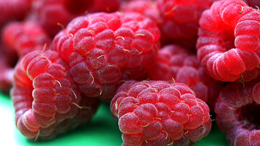 Berry good news about your health