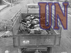 picture of united nations effects