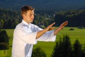 picture of man doing tai chi  in park