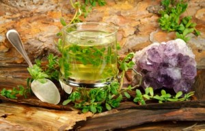 picture of Healing tea from Brahmi ( Bacopa monnieri) used in Ayurveda and in a calming manner