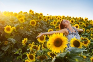picture of young beautiful woman on blooming sunflower field in summer