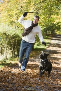 picture of Man outdoors with dog on path in park holding branch smiling (selective focus)