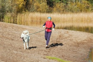 picture of The sports woman with a dog run along coast of the rivers