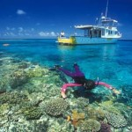 picture of snorkeling