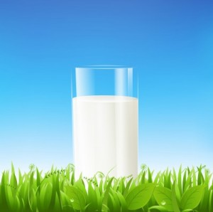 picture of milk