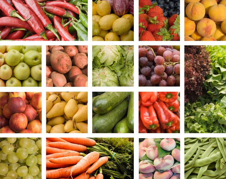 The health Wonders of Phytochemicals