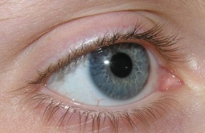 picture of blue eye