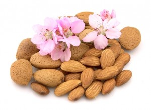 picture of Almonds with flower close up