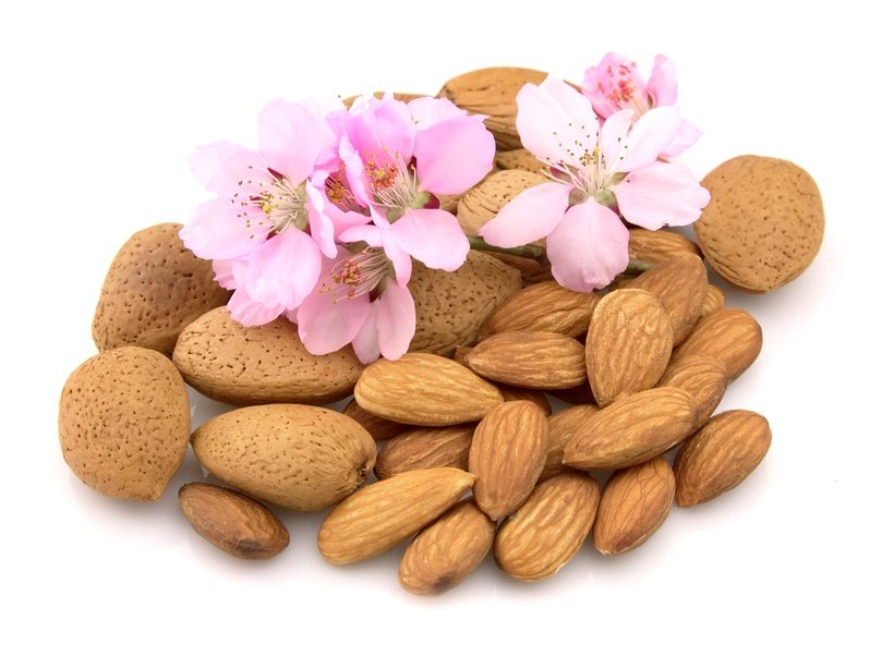 Study Finds Almonds Great Against Diabetes