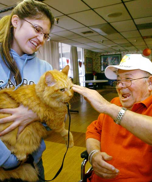 Pet therapy: how Fido and Whiskers make us healthier