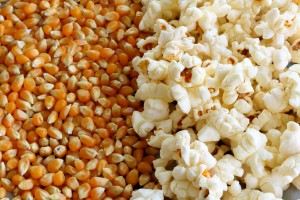 picture of Popcorn and kernels
