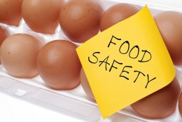 Eggs can carry Salmonella which is why it is important to properly cook eggs.