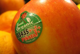 To find organic produce, look for sticker with a five digit code that starts with the number nine.