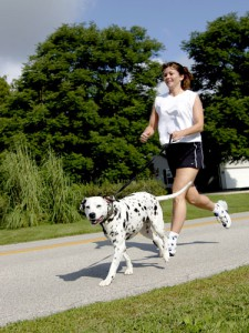 dog running with owner