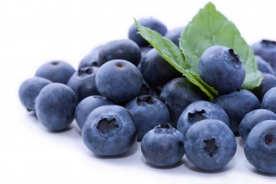 Blueberries Great for Students Memory
