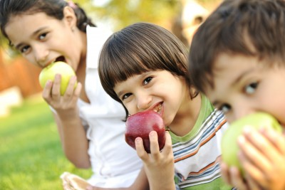 Making healthy lunches for your kid