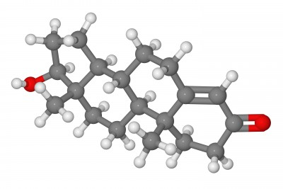 Synthetic and Bioidentical Teststerone