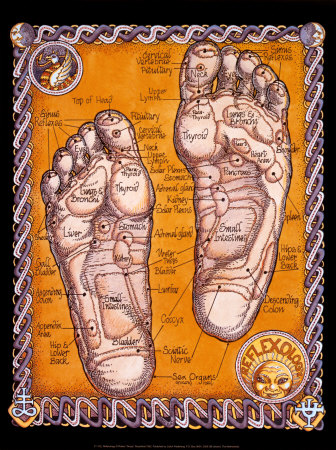 The Roots Of Reflexology