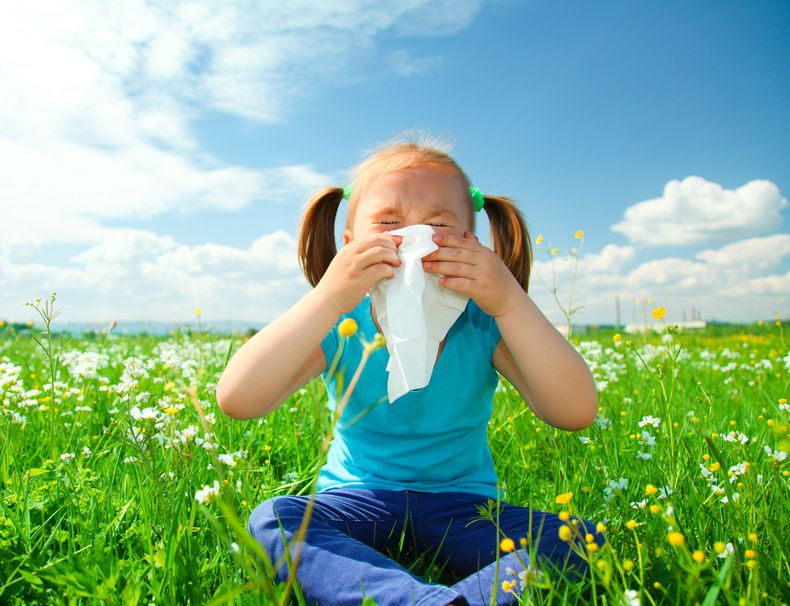 Prevent Allergy Symptoms Without Drugs