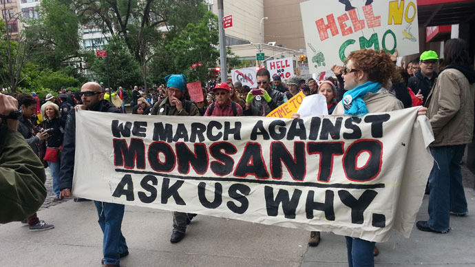 GMO UPDATE: Peaceful Protests, Threats of War and Blades of Wheat